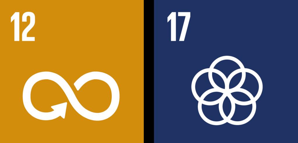 verdensmål challenges 12 og 17