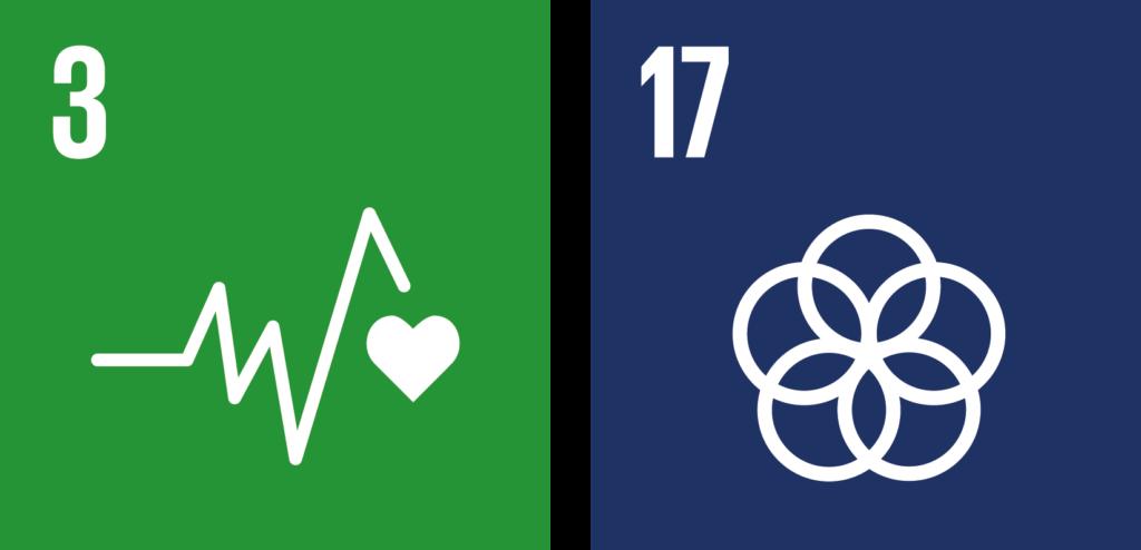 verdensmål challenges 3 og 17